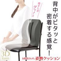 Alphax 3D Doctor Back Support Cushion AP-620006